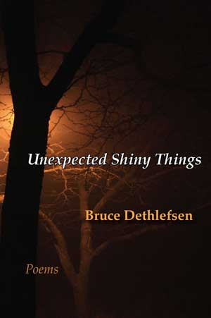 Unexpected Shiny Things cover